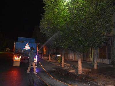 عمليات سم پاشي درختان سطح شهر طبق برنامه زمانبدي امشب 19 خرداد انجام مي گيرد.