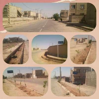كشت بیش از 200اصله درخت در خیابان مهرگان شهرك مسكن مهر