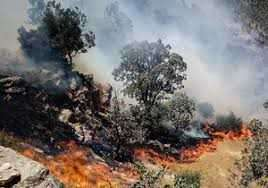سه آتش سوزی در یک روز در منطقه حفاظت شده ارژن و پریشان