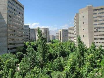 تاکید دبیر اجرایی هامادکسپو بر اعمال معماری ایرانی در پروژههای صنعتی