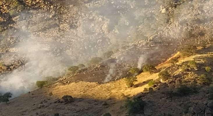 آتش در منطقه حفاظت شده بوزین و مرخیل پاوه همچنان شعله ور است