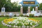 کاشت بیش از ۱۶۰ هزار بوته گل فصلی در بوستان ملت طی سه ماه اخیر