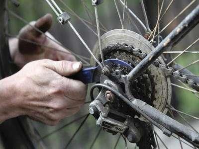 دوچرخههای رکابزنان قزوینی رایگان سرویس میشود