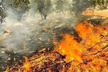 طراحی سامانه خودکار پیشبینی آتشسوزی در عرصههای طبیعی توسط سازمان هواشناسی
