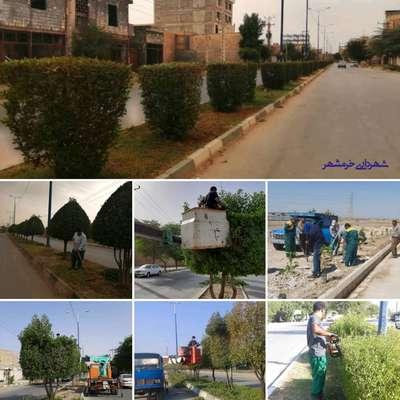 از هرس و فرم دهی درختان سطح شهر تا کاشت نهال و رسیدگی به وضعیت فضاهای سبز
