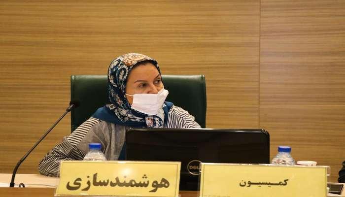 رئیس کمیسیون هوشمندسازی شورای شهر شیراز خبر داد: آغاز فاز چهارم پروژه فیبر نوری شیراز