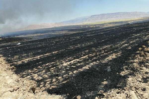 مهار آتش سوزی منطقه شکار و تیراندازی ممنوع قراویز