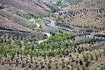 کمربند سبز؛ راهکاری برای مقابله با رشد قارچ گونه ساخت و ساز در شهر ها
