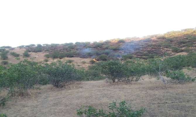 آتش در گریزمی پس از ۵ ساعت تلاش مهار شد/آماده باش یگان حفاظت محیط زیست دراستان