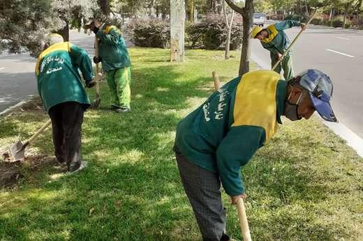 اجرای هم زمان چندین فعالیت در حوزه فضای سبز شهرداری منطقه ۲ تبریز
