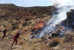 آتشسوزی عمدی در عرصههای طبیعی دراک شیراز مهار شد