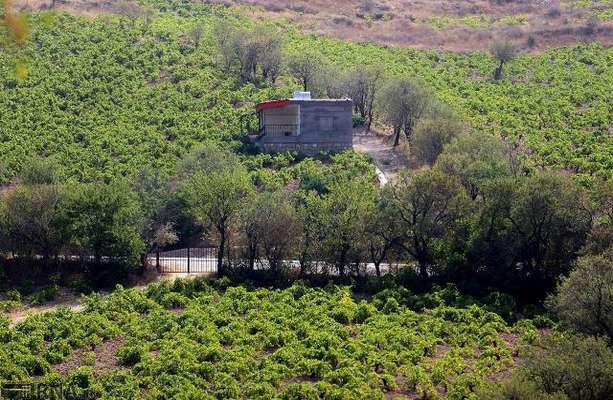 بالغ بر ۲ هزار متر مربع از اراضی ملی شمیرانات آزادسازی شد