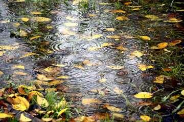 بارشها در سواحل شمالی کشور تداوم دارد