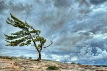 باد و باران شمال و جنوب را در مینوردد/ تلاطم در آبهای خزر و مناطقی از خلیج فارس