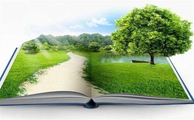 گزارش ارزیابی زیستمحیطی، ضرورت اجرای پروژهها