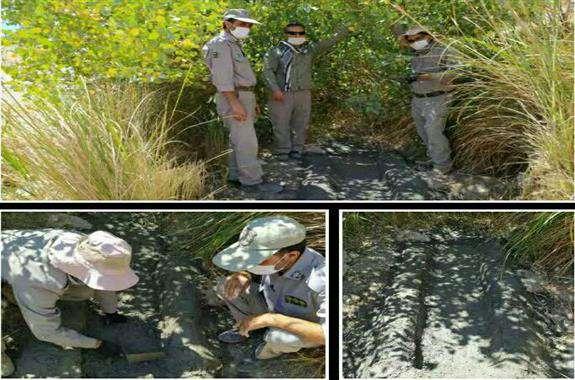 ساخت آبشخور برای پرندگان و حیوانات در ایوان