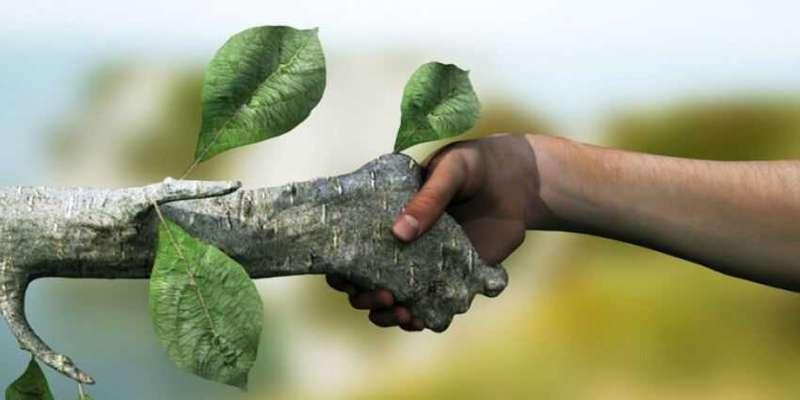 مشارکت اجتماعی رُکن اساسی توسعه پایدار است