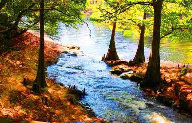 کسب رتبه نخست کشوری دفترمهندسی رودخانه شرکت آب منطقه ای...