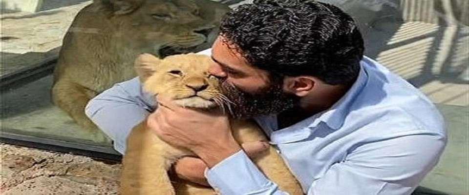 واکنش محیط زیست به فیلم جنجالی خواننده مشهور با یک توله شیر