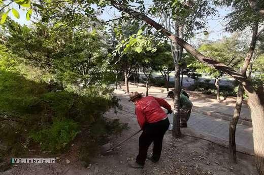 ترمیم تشتک پای درختان جاده ائل گلی