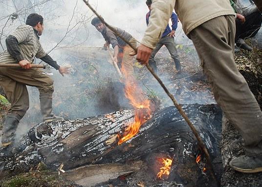 جاده جنگل ابر احداث شده بود، آتشسوزی جنگل گلستان زودتر مهار میشد