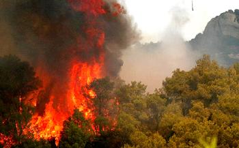 جنگلهای گلوگاه مازندران طعمه حریق شد