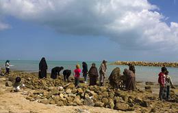 ساحل توریستی مشرف به محل احداث بلوار ساحلی خلیجفارس جزیره قشم پاکسازی شد