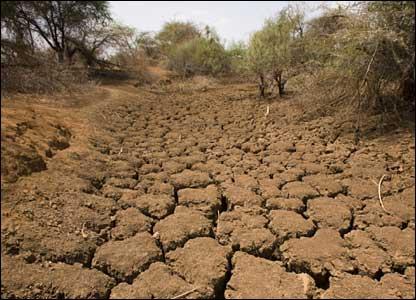 خشکسالی فراگیر و بلند مدت در اندونزی