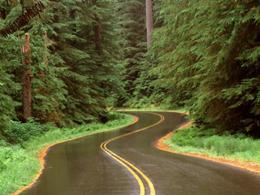 جاده های ایمن تر، راهی برای حفاظت هر چه بیشتر از انسان ها