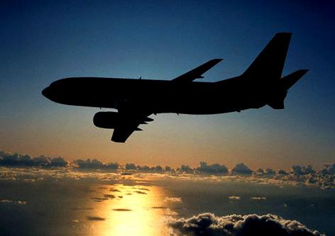 برخورد پرنده به ملخ هواپیما علت تاخیر پرواز تهران – بجنورد بوده است