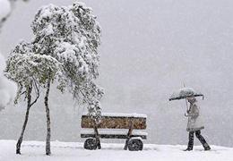 درختان تبریز با بلورهای برفی میزبان بهار میشوند