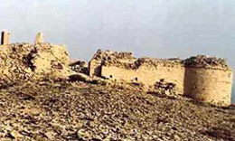 همایش بین المللی باستانشناسی جنوب آسیا در زاهدان آغاز شد
