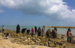 جنگل دریایی حرا، جذاب ترین سایت گردشگری قشم در نوروز ۹۲