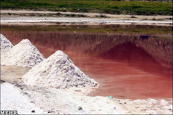 دریاچه مهارلوی شیراز قرمز شد/ شوری زیاد آب عامل تغییر رنگ دریاچه