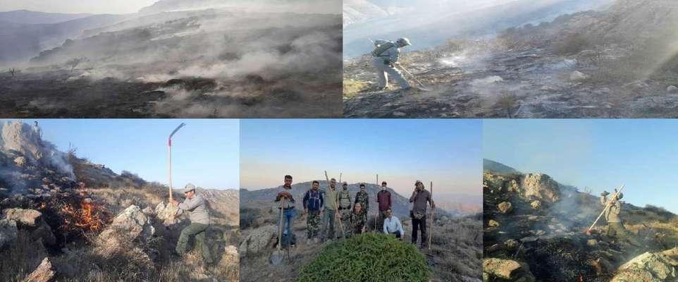 ۱۰۰ هکتار از جنگل هاو مراتع حسین آباد منطقه حفاظت شده طارم سفلی طعمه حریق شد