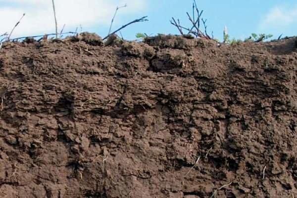 حقایقی جدید درباره خاکهای فروریزشی کشف شد