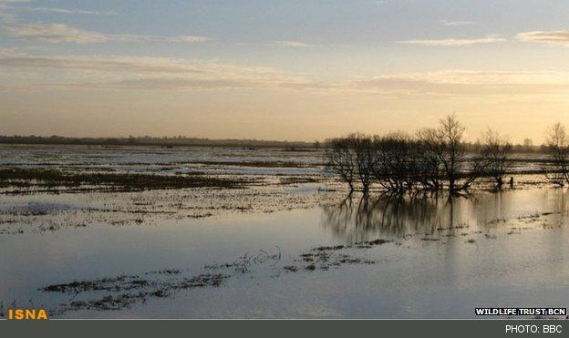 باتلاقی شدن میلیونها هکتار از اراضی فاریاب
