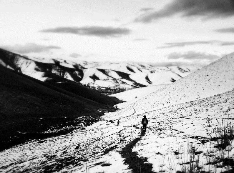 پیشبینی بارش برف در مناطق کوهستانی مازندران