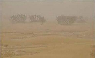 پرندگان مهاجر در گرد و غبار راه را گم میکنند