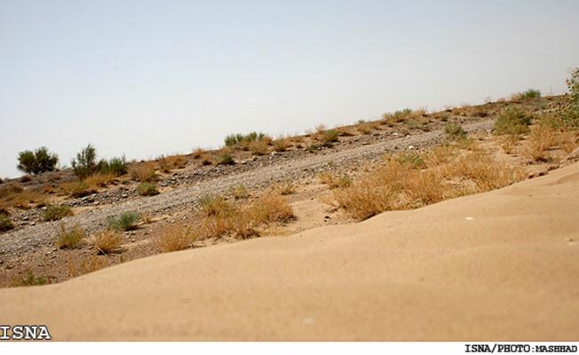 اقلیم گرم و خشک سیستان و بلوچستان مناسب رشد هر گیاه نیست