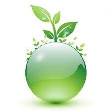 رسانهها کمترین توجه را در بخش فرهنگ سازی و آموزش محیط زیست دارند
