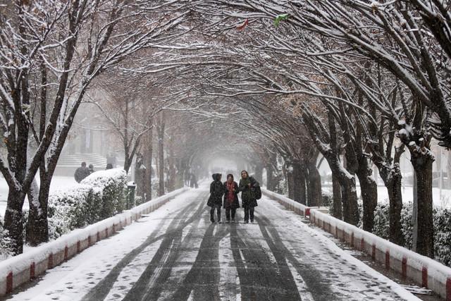 برف و باران ادامه دارد