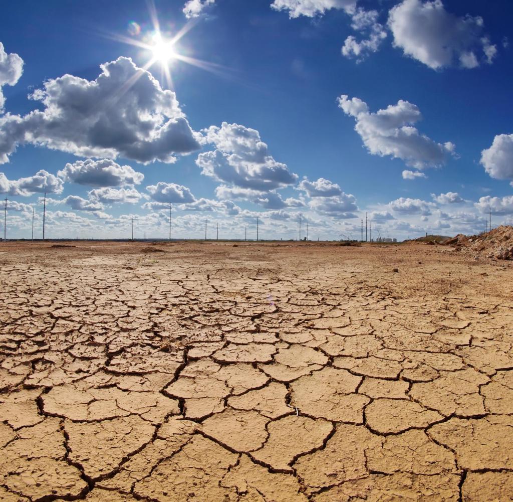 خشکسالی مزید علت بروز سیل در خراسان شمالی شد