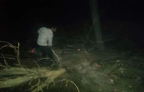 آتشسوزی باغستان محله وزیری منشاد مهریز مهار شد