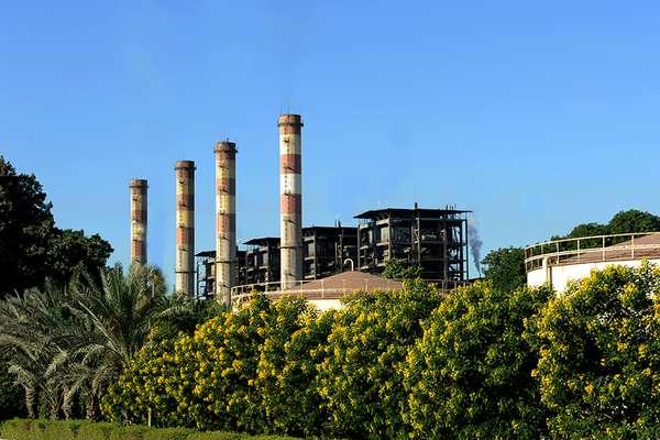 توسعه فضای سبز در نیروگاه بندرعباس