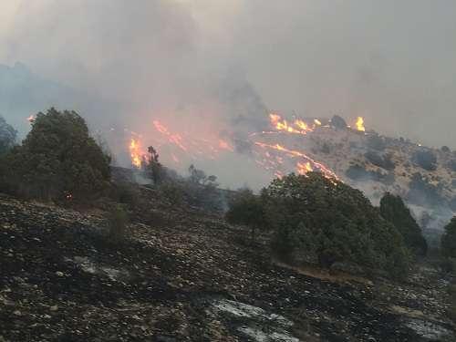 تدوین مدیریت استراتژی اطفاء حریق جنگل های استان قزوین