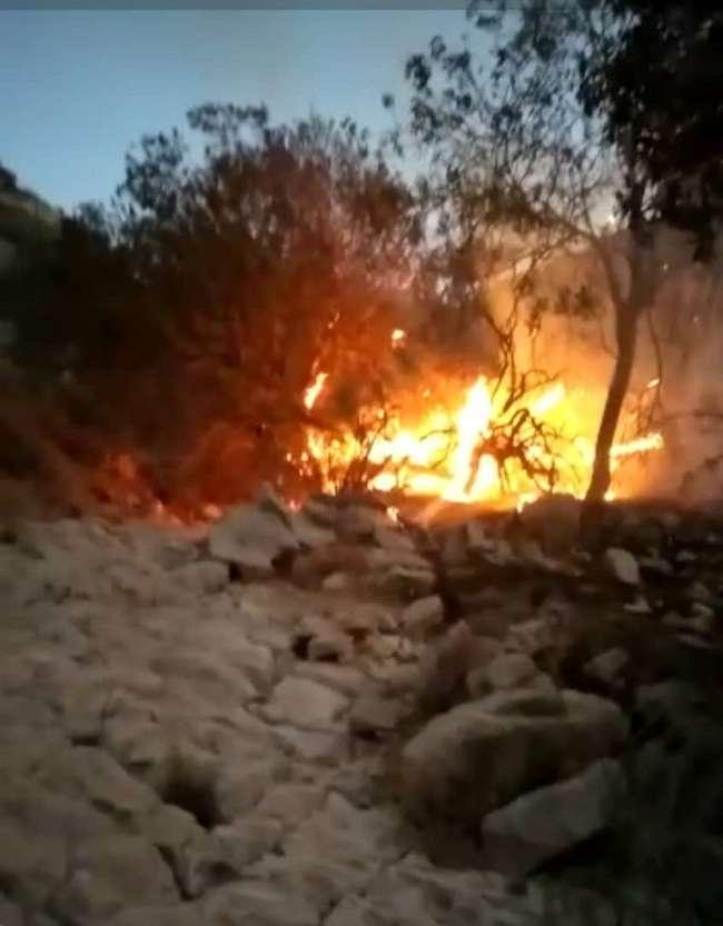 مهار آتش سوزی در منطقه حفاظت کشار