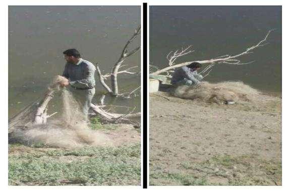 جمع آوری تورهای ماهیگیری غیرمجاز در سیروان