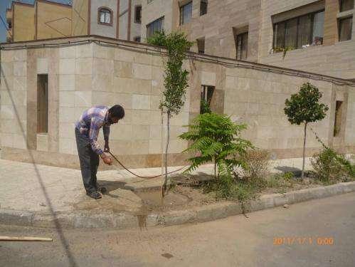تسهیلات تشویقی مشارکت شهروندان در آبیاری درختان