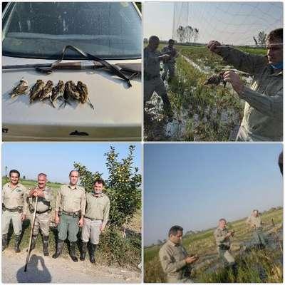 دستگیری متخلفان شکارو صید در سه شهرمازندران